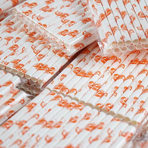 Custom Printing Paper Straws 4
